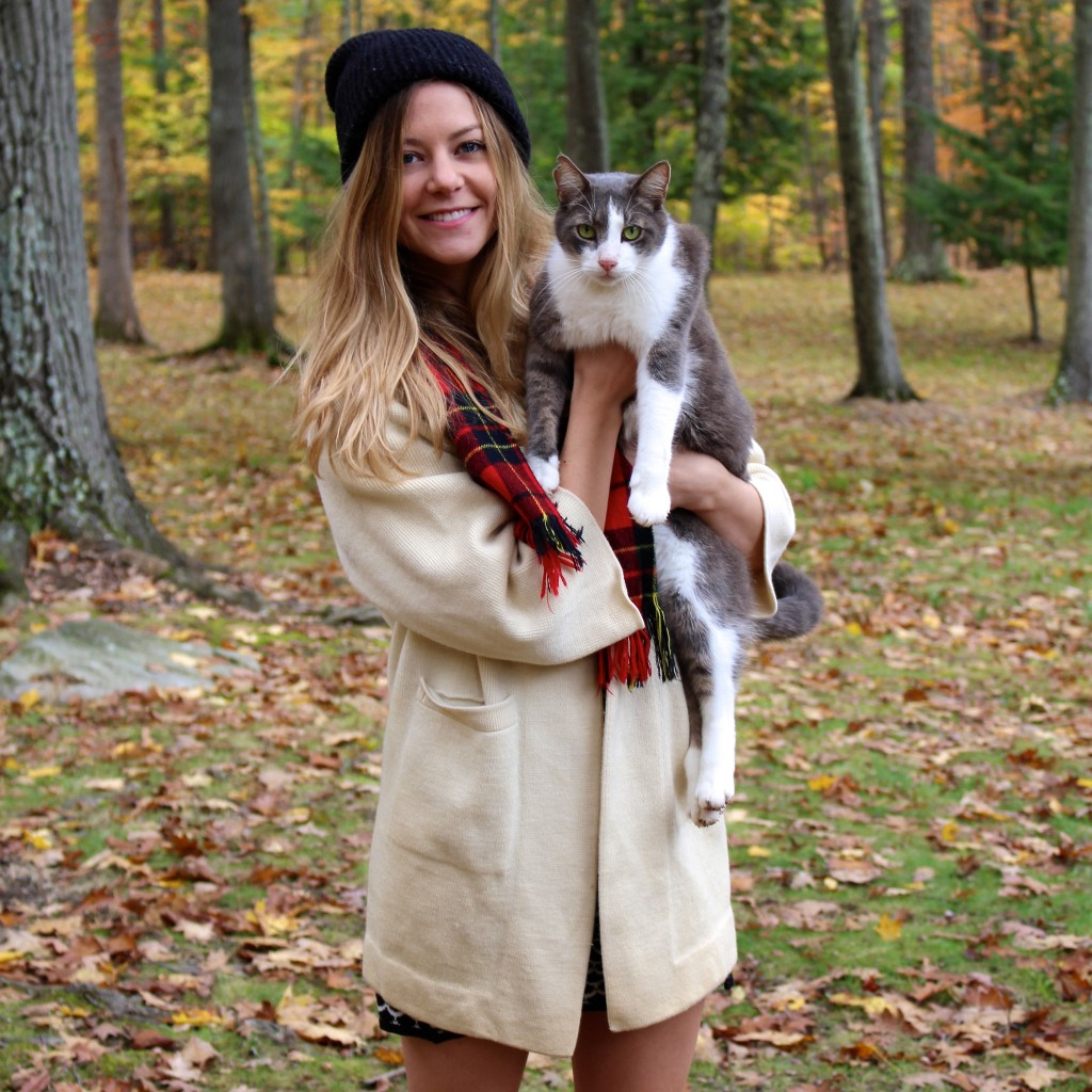 fall_new_york_cat