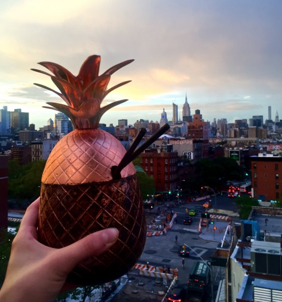 10 NYC Rooftop Bars You Need To Know About